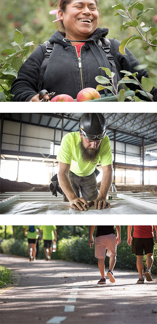Woman picking apples, man looking at blue print, people walking on trail
